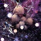 Fantasie Pilze und Feen von AnnArtshock