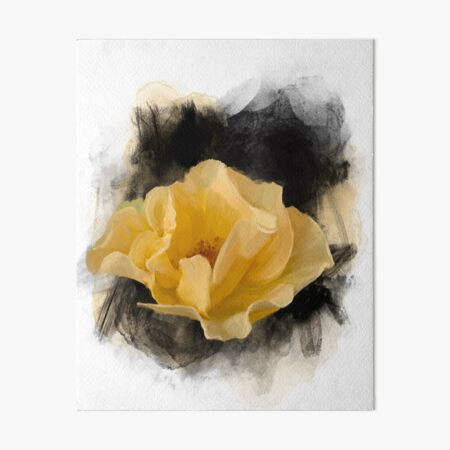Yellow Rose Art Board Print