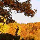 painted autumn by deegarra