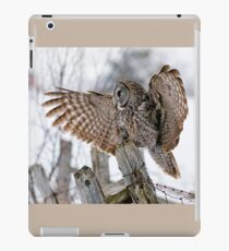 Great Grey Owl - Dunrobin, Ontario iPad Case/Skin