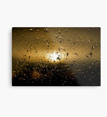 Rainy Day #12 Metal Print