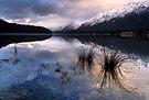 Mavora Lakes by Michael Treloar