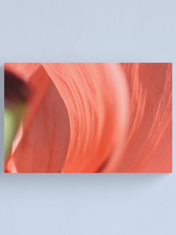Alternate view of inside the poppy's heart! Canvas Print