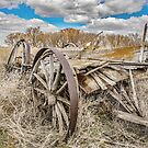 Just Some Old Wagon Rotting Away by Jerry Walter