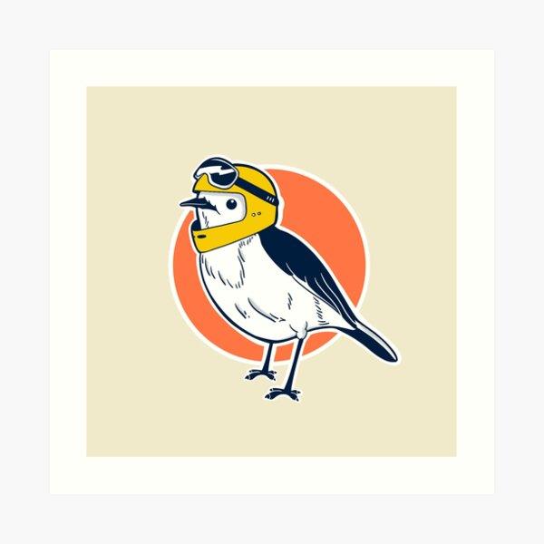 Racer Robin Art Print
