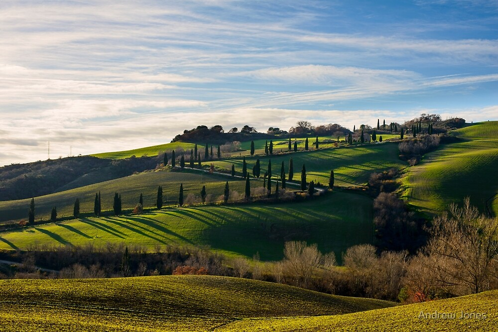 Serpentine Path, La Foce, Tuscany, Italy by Andrew Jones