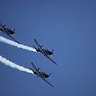 air show 15 by BlaizerB