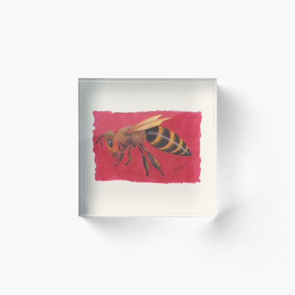 Bee (2019) Acrylic Block