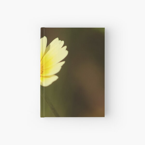 Spring Daisy Hardcover Journal