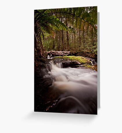 Relapse Creek Cascades Greeting Card