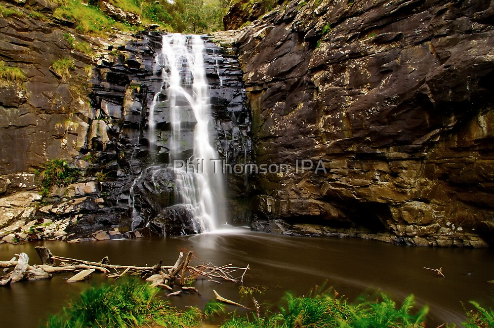 """Sheoak Falls Amphitheatre"" by Phil Thomson IPA"