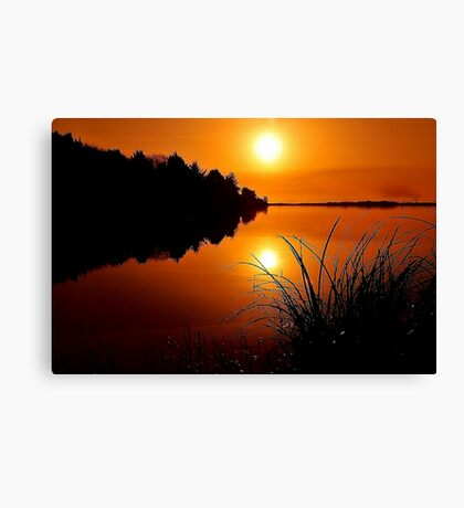 ULTIMATE REFLECTION ~  Canvas Print