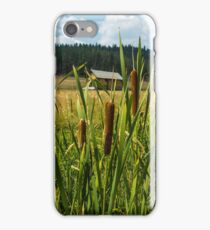 Cattails on the Pilgerim Ranch iPhone Case/Skin
