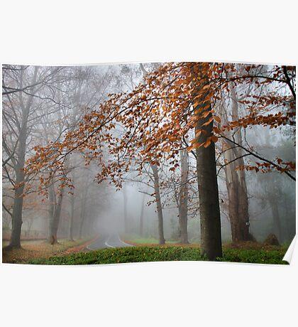 Mist in Sherbrooke Poster