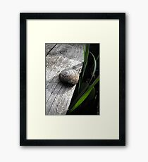 Simplistic Beauty Framed Print