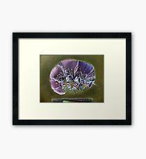 Symbiosis: Tardigrade Framed Print