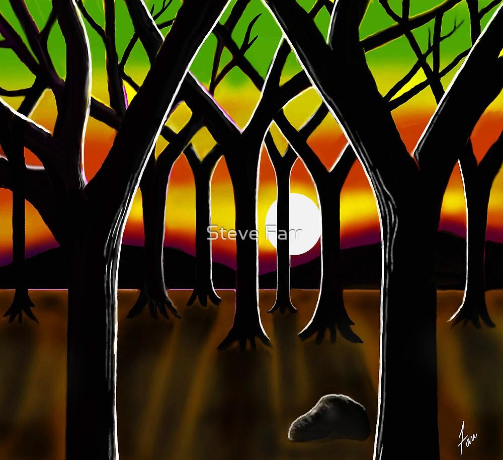 """""""Hidden White Sun"""" by Steve Farr"""