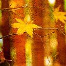 Leaf Zen L by Rebecca Cozart