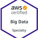AWS Certified Big Data Specialty #1 by erkung