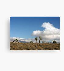 Oak Creek Canyon Road, Mojave, California Canvas Print