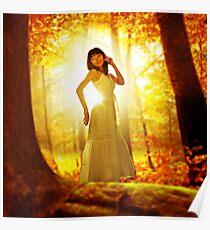 Serenity! Poster
