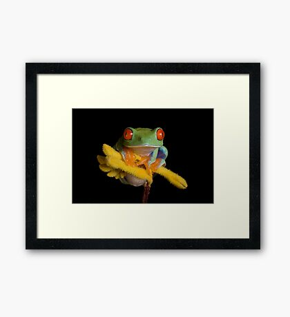 The lookout point Framed Print