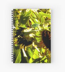 Bowing Sun Flowers Spiral Notebook