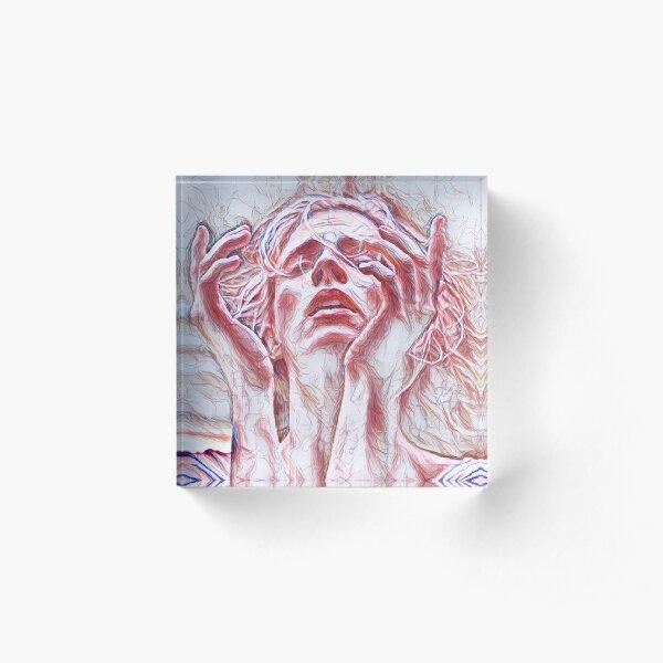 Save the OA - sketch Acrylic Block