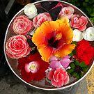 Wippen nach Blumen von Sandra Fortier