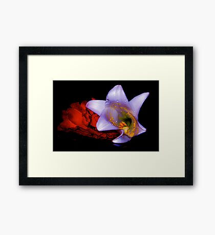 OPPOSITE ATTRACTS Framed Print