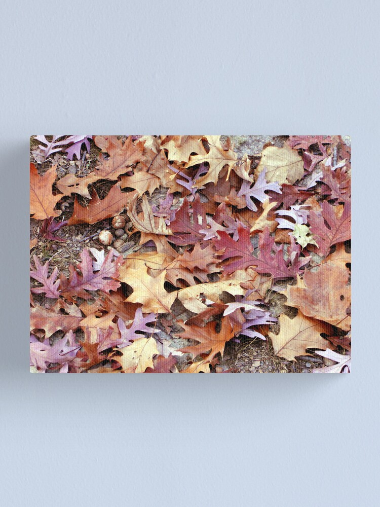 Alternate view of Glory Underfoot Canvas Print