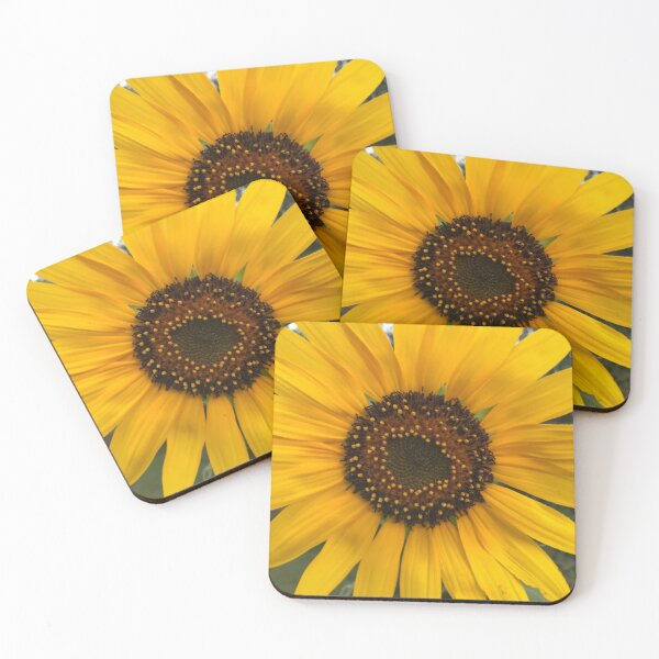 Happy Sunflower  Coasters (Set of 4)