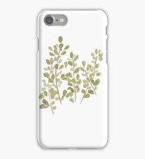 Edible Botanical Marjoram No. 11 iPhone Case/Skin