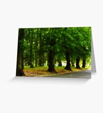 I would rather be with trees Greeting Card