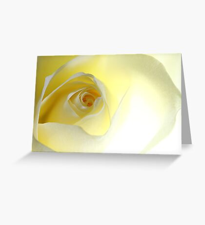 La vie en rose, #1 Greeting Card