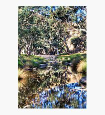 Marne reflections Photographic Print