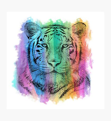 Watercolor Tiger Photographic Print