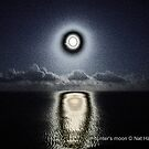 Hunter's moon by NordicBlackbird