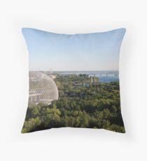 Biosphere Throw Pillow