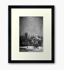 Just Can't Stay Away From You Framed Print