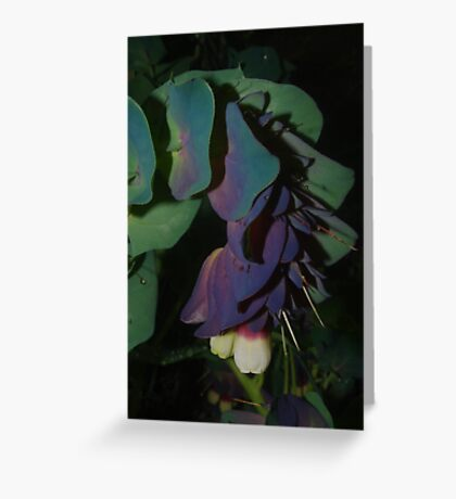 Unusual flower Greeting Card