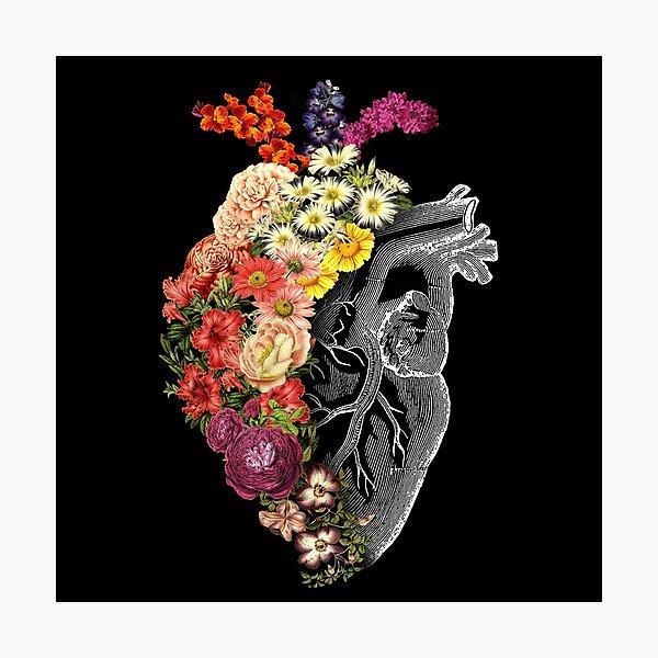 Flower Heart Spring Photographic Print