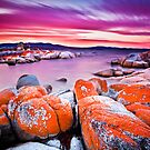 Binalong Bay, Bay of Fires, Tasmania by Matthew Stewart