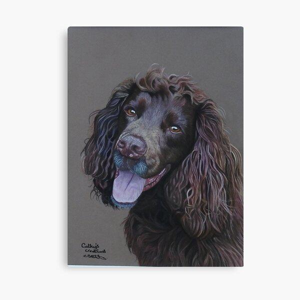 Working Cocker Spaniel, Fin Canvas Print