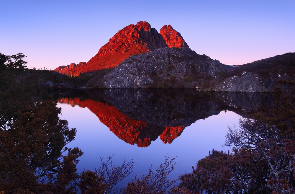 Morning Light on Little Horn - Cradle Mountain N.P. by Mark Shean