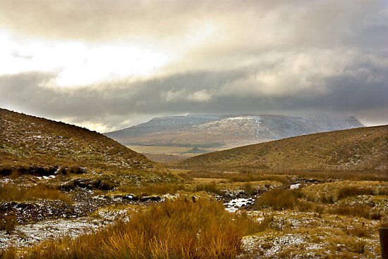 Winter in The Dales by Trevor Kersley