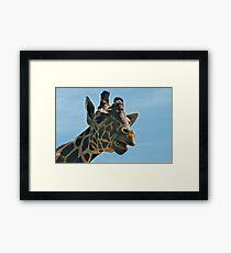 Giraffe SAYING Hello Framed Print