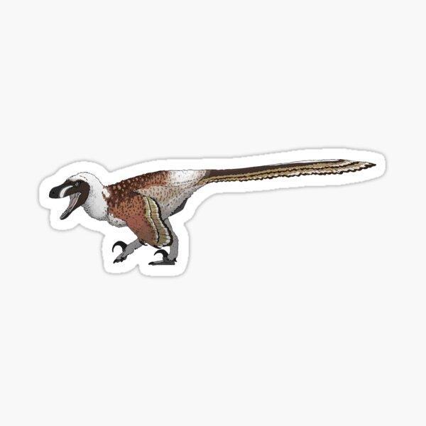 Acheroraptor (No Background) Sticker