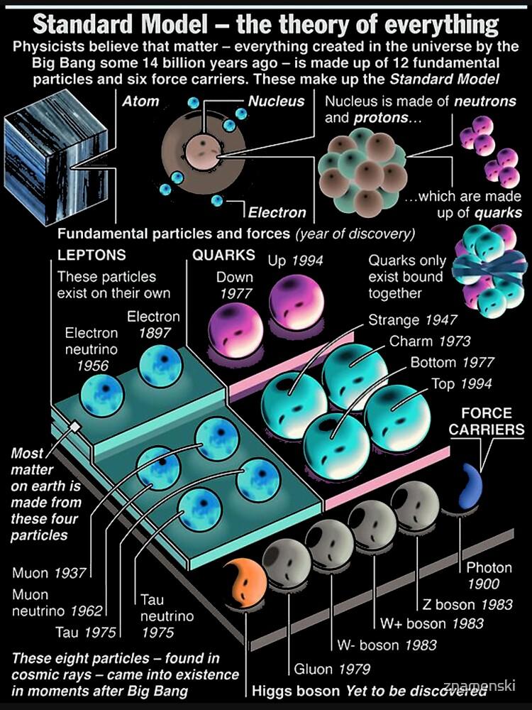 Physics Standard Model Theory  by znamenski