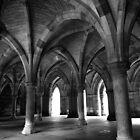 Glasgow University Cloisters by Julie Paterson